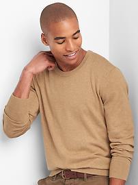Crewneck Sweater in Cotton