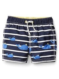 Whale stripe swim trunks