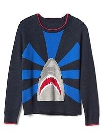 Intarsia graphic raglan sweater