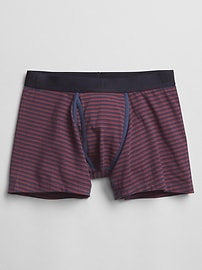 "4"" Stripe Boxer Briefs"